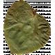 Pressed Leaf 03