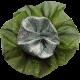 Grandma's Kitchen Green Layered Flower