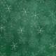 Winter Wonderland- Green Doodle Snowflake Paper
