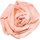 Peach Fabric Rose