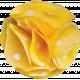 Tiny, But Mighty Yellow Polkadot Flower