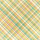 Tiny, But Mighty Plaid Fabric Paper