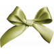 Tiny, But Mighty Green Bow
