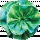 Blue Green Fabric Rosette