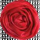 Red Ribbon Rose