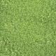 The Lucky One Light Green Glitter Paper