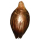 Earth Day Seed 03