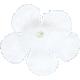 Small White Silk Flower 02