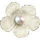 Hello- Cream Flower