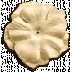 Oh Baby Cream Flower