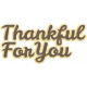 Many Thanks- Thankful For You Word Art