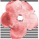 Summer Fields - Coral Flower 2