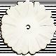 Summer Fields - White Flower