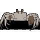 Tropics Crab