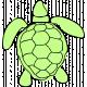 Tropics Turtle