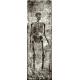 Spook Wood Skeleton