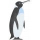Perky Penguins - Penguin Sticker