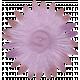 Vivian Margo: Flower 01