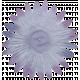 Vivian Margo: Flower 02