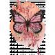 Pink & Orange Watercolor Butterfly Transfer Cluster