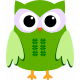 Saint Patrick Owl