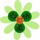 Saint Patrick Flower 04