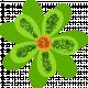 Saint Patrick Flower 05