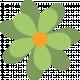 Saint Patrick Flower 07