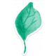 Bloom Leaf Sticker 2