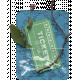 Filler Card_Nature Ticket to Fun