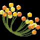 Mod Flower 04