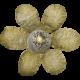 Neutral Flower (02)