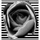 Fabric Flower 05 (template)