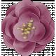 Autumn Wind Elements- flower 13