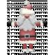 Christmas Cuties Mini - santa