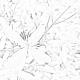 Flower Background - Autumn Clematis 3