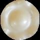 Jane- Cream Button
