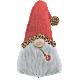 Wild Gnome Christmas