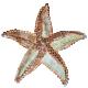 Sea Glass Starfish