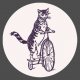 The Good Life: August Bits & Pieces- Cat Riding Bike Sticker