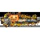 Halloween Cluster 01