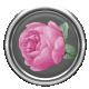 Rose Flair