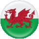 Wales Flag Flair Brad