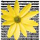 @Sas_Scrapkit_FloralSummer_Element08