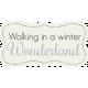 Winter Wonderland Snow- Tag Wonderland