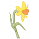 Fabric Daffodil