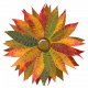 Flower- Autunm/fall leaves 3/3