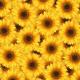 Paper - Sunflowers 1