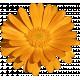 Plum & Marigold- Marigold Sticker Bright