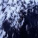 Calf Skin Blue Roan